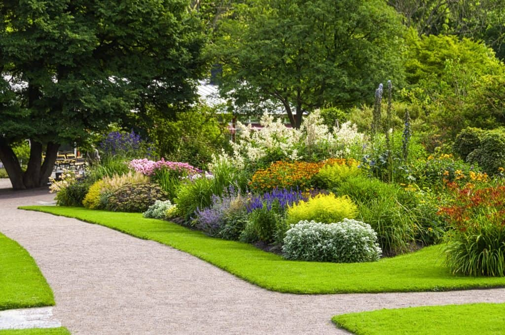 Gardening Services Blackheath & Greenwich